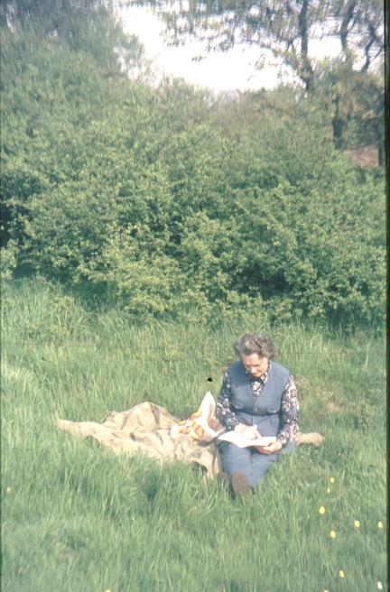 Oude dia foto van 40 jaar geleden. Een vrouw zit op een kleed in een grasveld, met stof en beschadigingen op de foto. De kleuren zijn flets. Fotobewerking / herstellen van oude foto's en dia's.