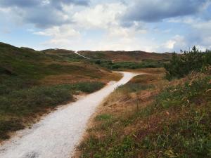 Foto genomen op Texel. Pad door de duinen. Natuurfotografie / landschapsfotografie.